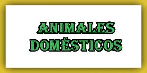 Lista de animales domésticos