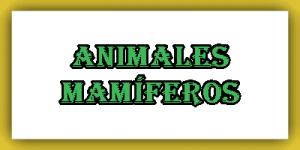 Lista de animales mamíferos