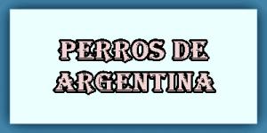 Perros de Argentina